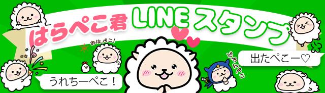 banner_line01_640x184